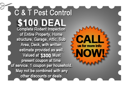 C & T Pest Control $100 Deal Coupon